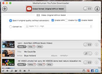 youtube_downloader_033